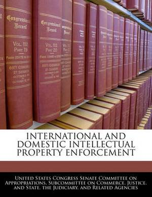 International and Domestic Intellectual Property Enforcement