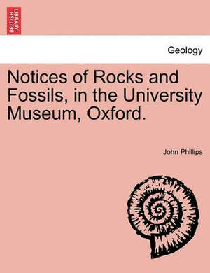 Notices of Rocks and Fossils, in the University Museum, Oxford.
