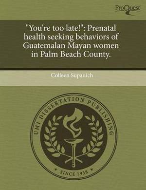 You're Too Late!: Prenatal Health Seeking Behaviors of Guatemalan Mayan Women in Palm Beach County