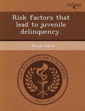 Risk Factors That Lead to Juvenile Delinquency