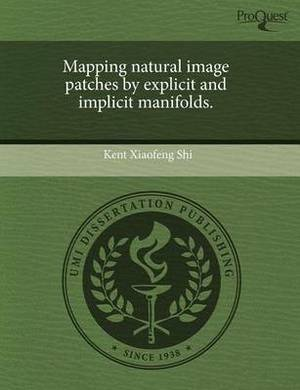 Mapping Natural Image Patches by Explicit and Implicit Manifolds