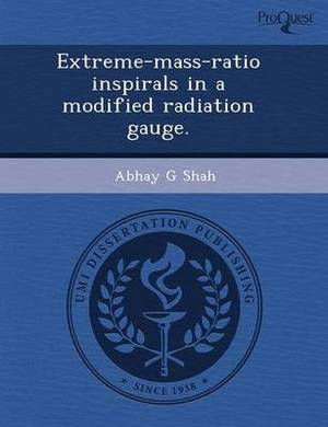 Extreme-Mass-Ratio Inspirals in a Modified Radiation Gauge
