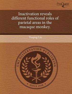 Inactivation Reveals Different Functional Roles of Parietal Areas in the Macaque Monkey