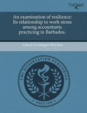 An Examination of Resilience: Its Relationship to Work Stress Among Accountants Practicing in Barbados