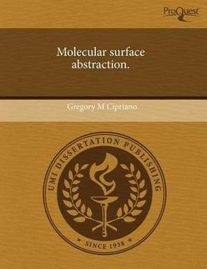 Molecular Surface Abstraction