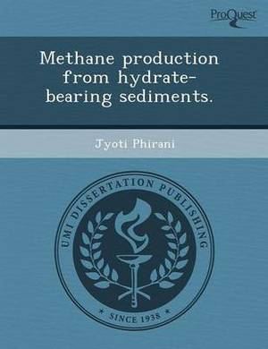 Methane Production from Hydrate-Bearing Sediments
