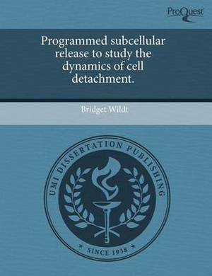 Programmed Subcellular Release to Study the Dynamics of Cell Detachment