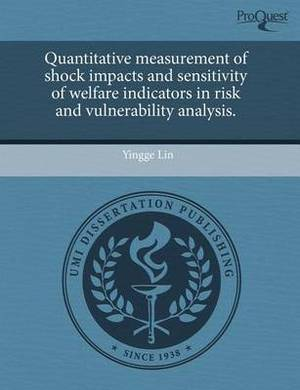 Quantitative Measurement of Shock Impacts and Sensitivity of Welfare Indicators in Risk and Vulnerability Analysis