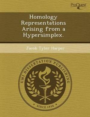 Homology Representations Arising from a Hypersimplex