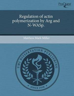 Regulation of Actin Polymerization by Arg and N-Wasp