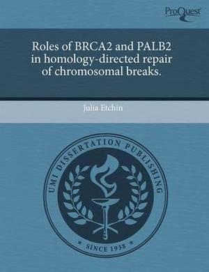 Roles of Brca2 and Palb2 in Homology-Directed Repair of Chromosomal Breaks