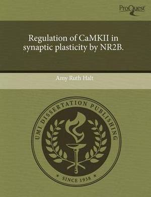 Regulation of Camkii in Synaptic Plasticity by Nr2b