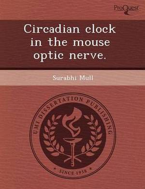 Circadian Clock in the Mouse Optic Nerve