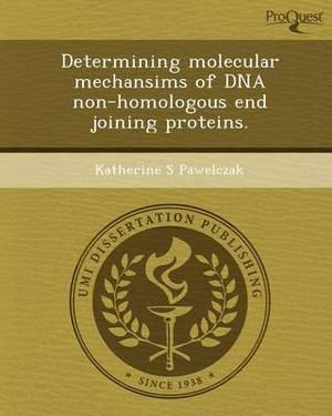 Determining Molecular Mechansims of DNA Non-Homologous End Joining Proteins