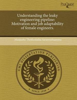 Understanding the Leaky Engineering Pipeline: Motivation and Job Adaptability of Female Engineers