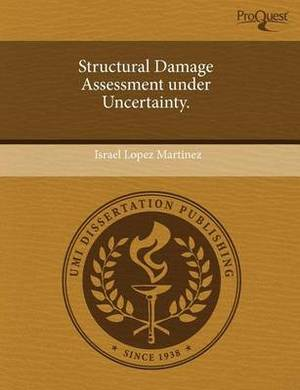 Structural Damage Assessment Under Uncertainty