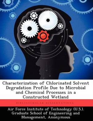 Characterization of Chlorinated Solvent Degradation Profile Due to Microbial and Chemical Processes in a Constructed Wetland