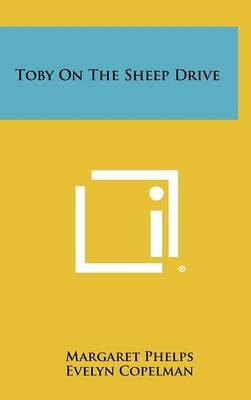 Toby on the Sheep Drive