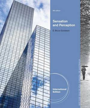 Sensation and perception paper term papers