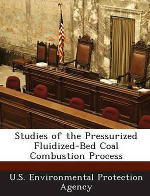 Studies of the Pressurized Fluidized-Bed Coal Combustion Process