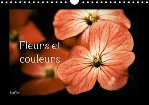 Fleurs Et Couleurs: Calendrier Mensuel Sur Le Theme Des Fleurs Et Des Couleurs