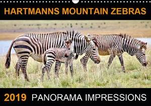 HARTMANNS MOUNTAIN ZEBRAS 2019: The calendar Hartmanns Mountain Zebras created by Barbara Fraatz is showing 12 wonderful pictures of the endangered Hartmanns Mountain Zebras in South Africa.