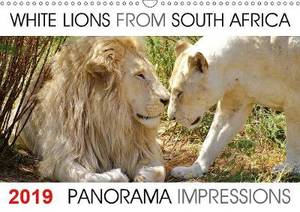 White Lions from South Africa Panorama Impressions 2019: The calendar  White Lions from South Africa Panorama Impressions created by Barbara Fraatz, a photographer in South Africa (www.thula-photography.com ) is showing 12 fantastic white lion portraits f