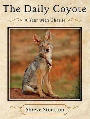 The Daily Coyote: A Year with Charlie