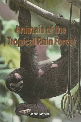 Animals of the Tropical Rain Forest
