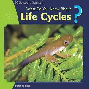 What Do You Know about Life Cycles?