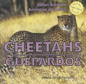 Cheetahs/Guepardos