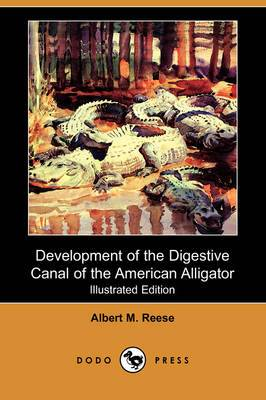Development of the Digestive Canal of the American Alligator (Illustrated Edition) (Dodo Press)