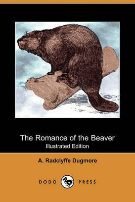 The Romance of the Beaver: Being the History of the Beaver in the Western Hemisphere (Illustrated Edition) (Dodo Press)