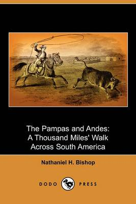 The Pampas and Andes: A Thousand Miles' Walk Across South America (Dodo Press)