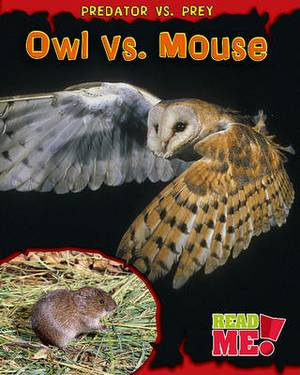 Owl vs. Mouse