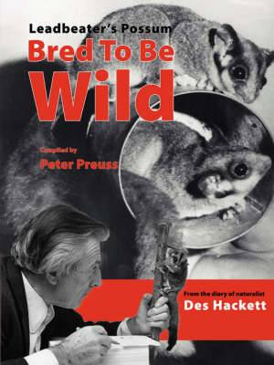 Leadbetter's Possum: Bred to be Wild - From the Diary of Naturalist Des Hackett