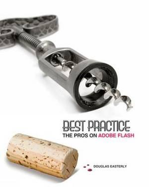 Best Practice: The Pros on Adobe Flash