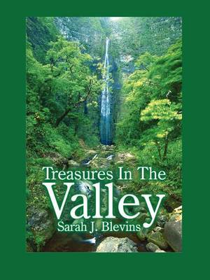 Treasures In The Valley