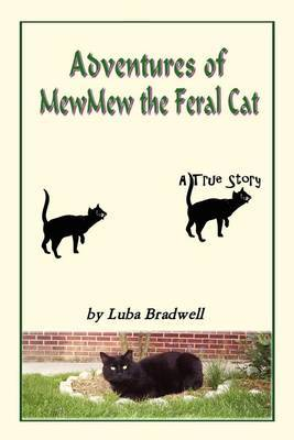 Adventures of Mewmew the Feral Cat