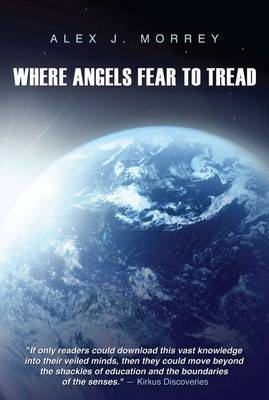 Where Angels Fear to Tread: The Nature of Reality and Meaning of God
