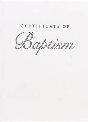 Abingdon Select Children's Baptism Silver