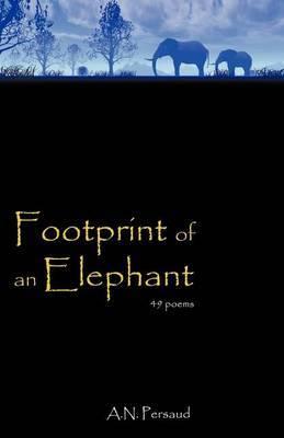 Footprint of an Elephant