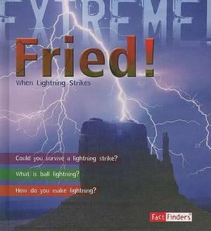 Fried!: When Lightning Strikes