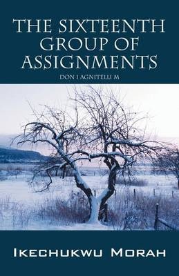 The Sixteenth Group of Assignments: Don I Agnitelli M