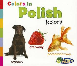 Colors in Polish: Kolory