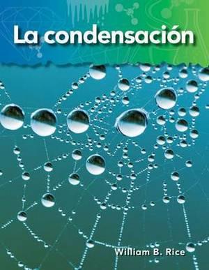 La Condensacion (Condensation)