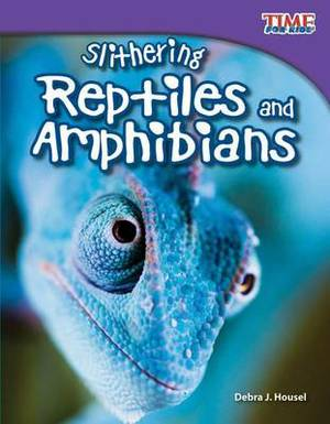 Slithering Repitles and Amphibians