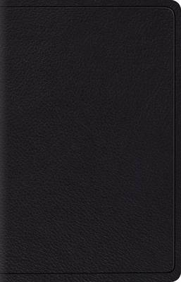 ESV Wide Margin Reference Bible