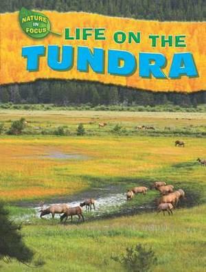 Life on the Tundra