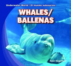 Whales / Ballenas